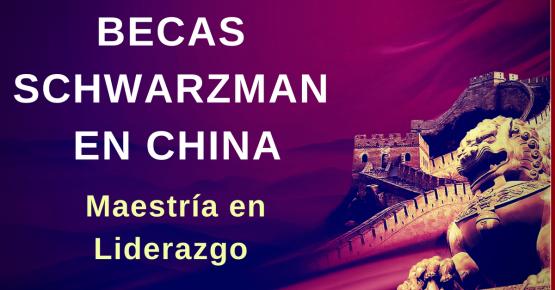 Estudiar en China gratis