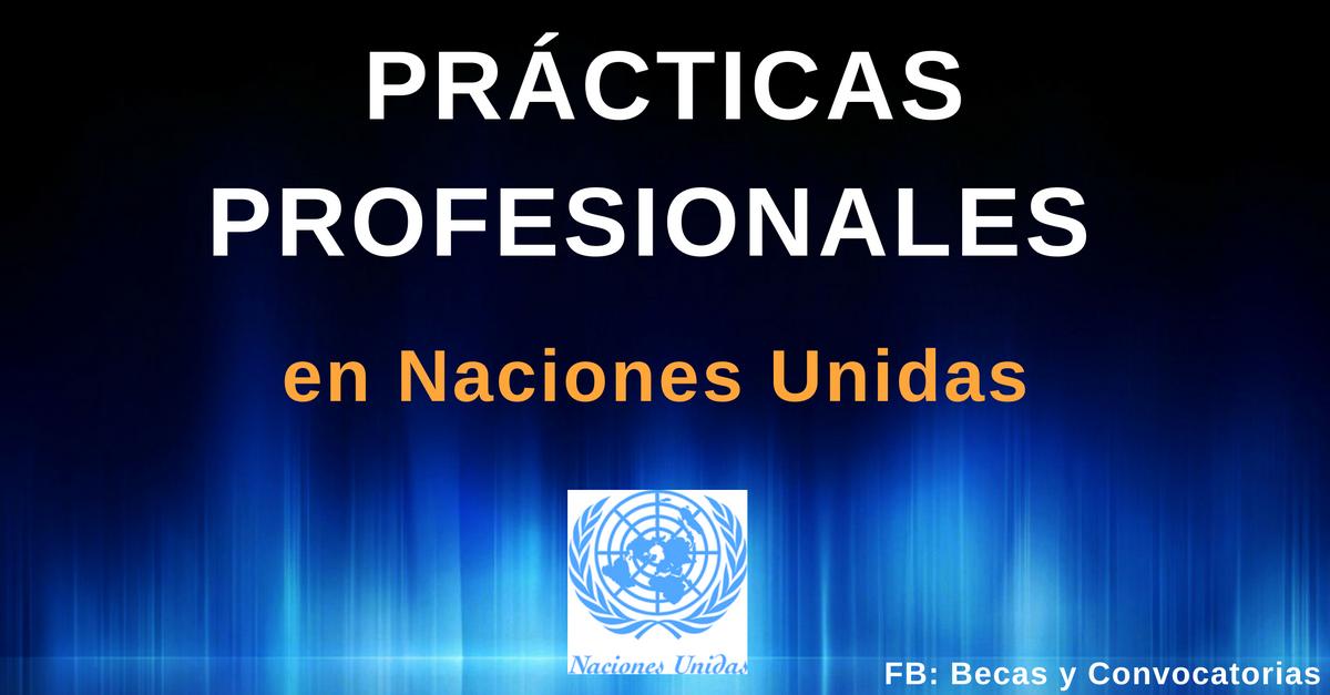 prácticas profesionales en naciones unidas