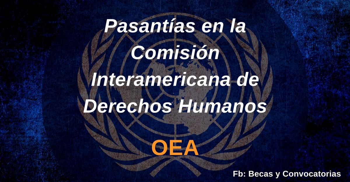Pasantías OEA