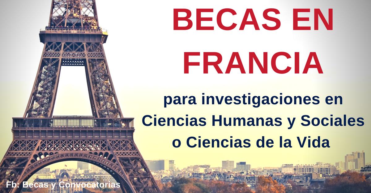 becas en ciencias en francia