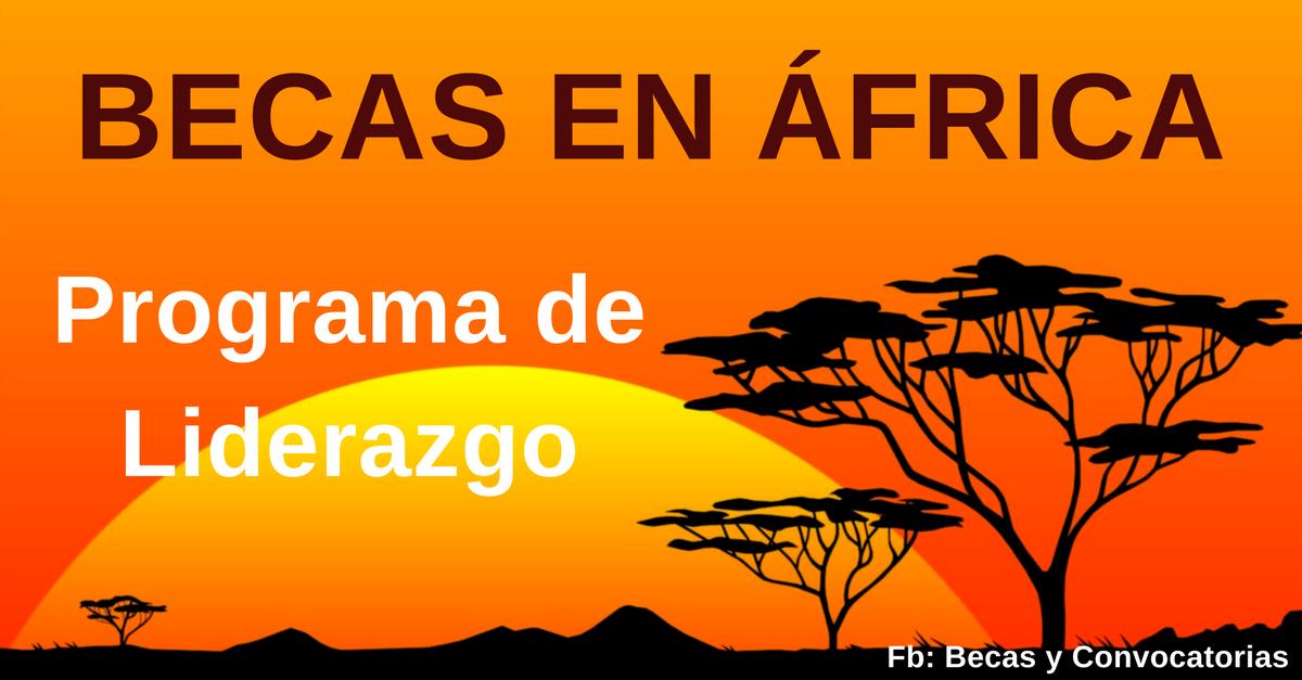 mejores becas en africa