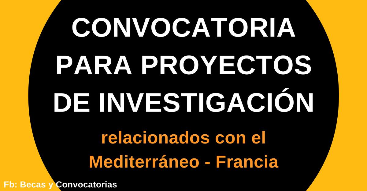 practiccas de investigacion en francia
