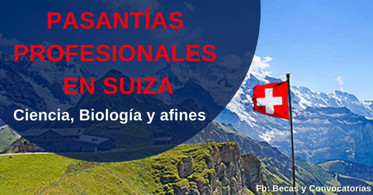 becas de estudios en suiza