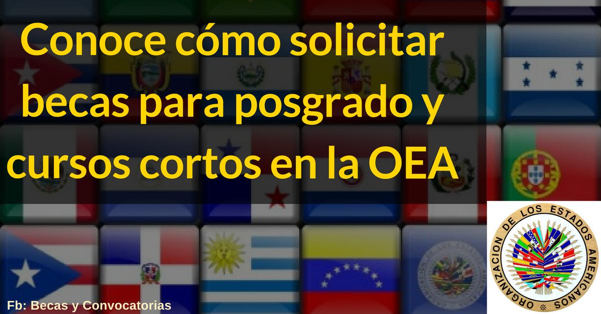 ¿Cómo solicitar becas OEA para posgrado y cursos cortos? Mega tutorial
