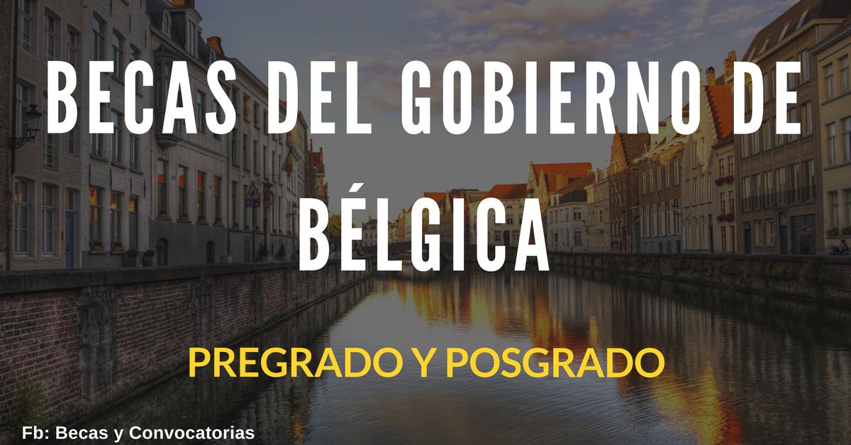 pregrado y posgrado en belgica
