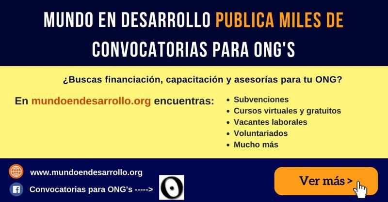 convocatoria ONG