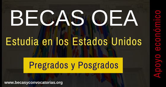 becas universitarias en los Estados Unidos
