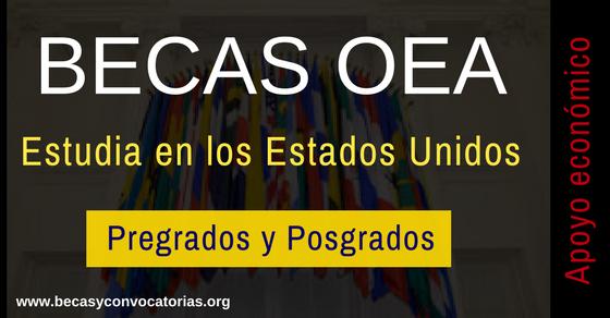 Becas OEA para estudiar en cualquier universidad de los Estados Unidos