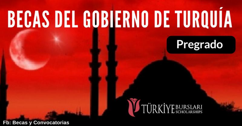 Becas del Gobierno de Turquía para extranjeros