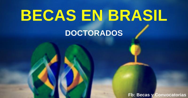 Becas en Brasil