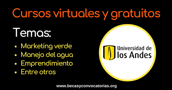 Universidad de los Andes curso virtual
