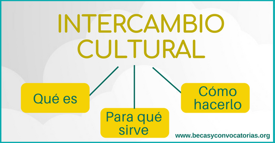 becas de intercambio