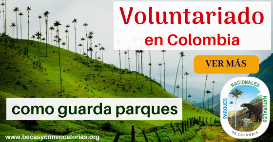 Voluntariado Colombia