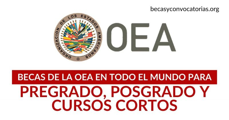 Becas de la OEA para pregrado, posgrado y cursos cortos en todo el mundo