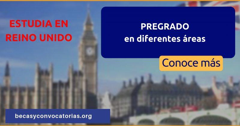 Becas pregrado Reino Unido