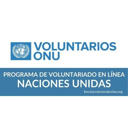 programa voluntariado naciones unidas