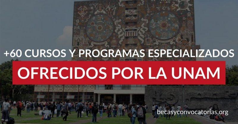 La UNAM ofrece +60 cursos y programas especializados online en todas las áreas