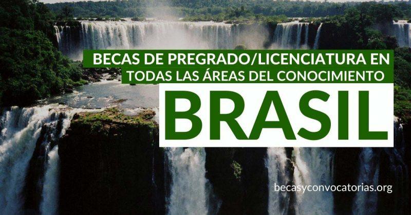 becas-pregrado-licenciatura-brasil