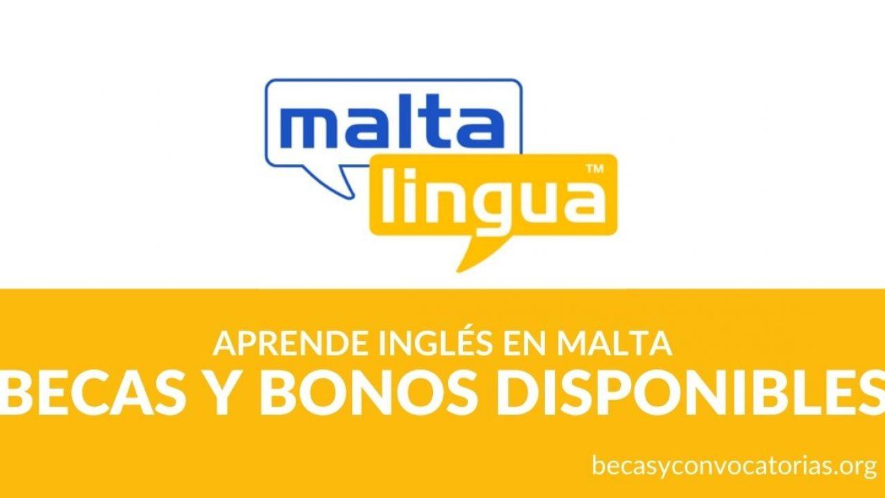 Maltalingua School Becas Y Bonos Para Aprender Ingles En Malta